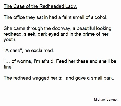 The Case of the Redheaded Lady