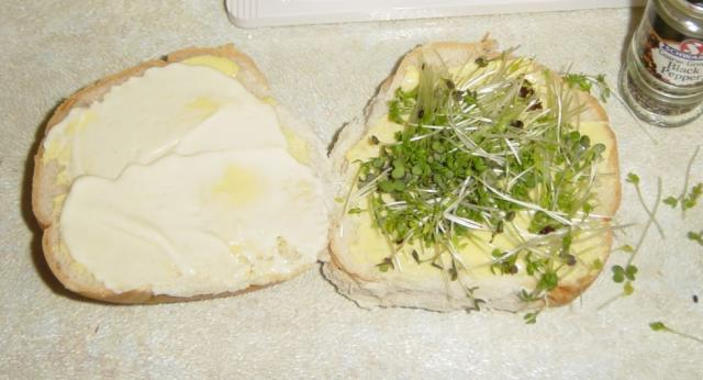 Making a perfect Egg Butty - Mayo and cress. Raymond Blanc makes the best mayo, the cress you get from anywhere...